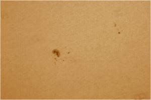 SOLE-MacchieSolari 16-05-09 14-01-45